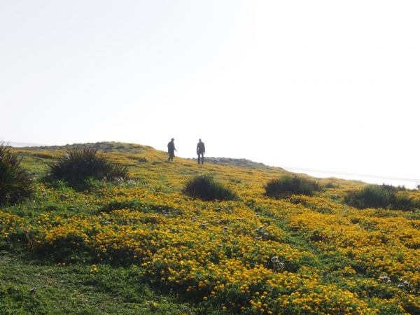 Tahadart, province de Tanger
