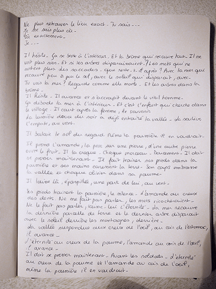 http://mounasaboni.com/files/gimgs/47_la-poussiere.jpg